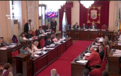El pleno del Ayuntamiento de Málaga reitera su apoyo mayoritario a la Torre del Puerto